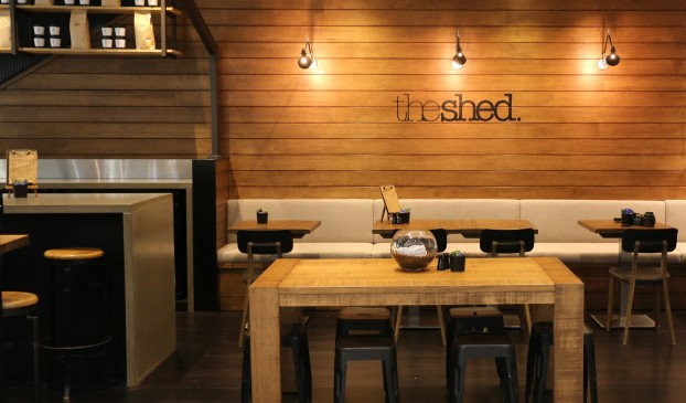 the shed-31